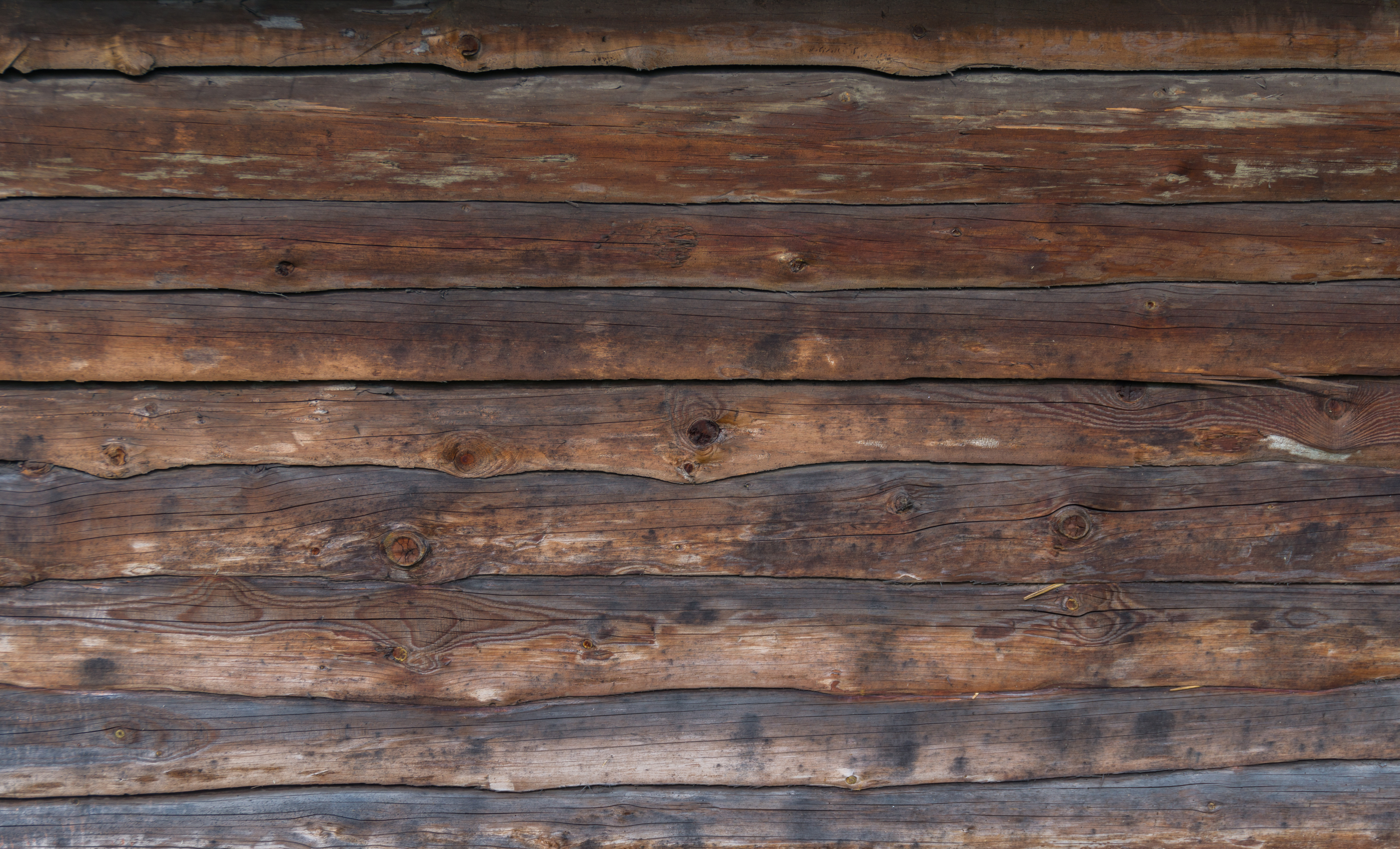 Board wood texturify free textures